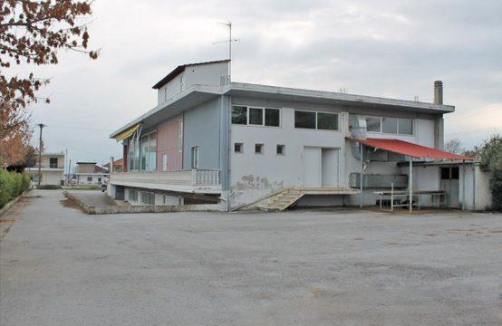 Business for Rent in Katerini, Pieria – 900 sq.m.