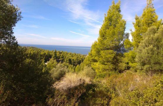 Land 7250 sq.m. for Sale in Neos Marmaras, Sithonia