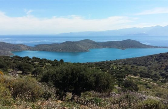 Land for For Sale in Epano Elounta, Lasithi – 24703 sq.m.