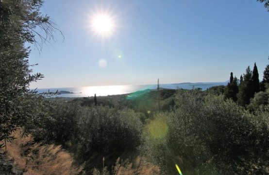 Land for Sale in Magoulades, Kerkyra – 1500 sq.m.