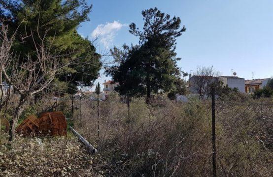 Land for Sale in Nikitas, Sithonia – 430 sq.m.