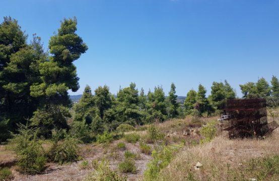 Land for For Sale in Kallithea, Kassandra – 11000 sq.m.