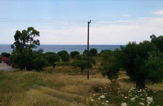 Land for For Sale in Gerakini, Sithonia – 4214 sq.m.