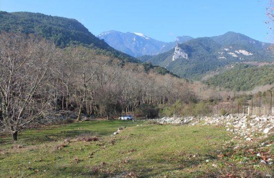 Land for For Sale in Litochoro, Pieria – 4800 sq.m.
