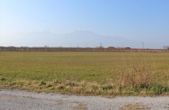 Land for For Sale in Nea Efesos, Pieria – 13500 sq.m.