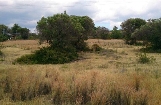 Land for For Sale in Gerakini, Sithonia – 894 sq.m.