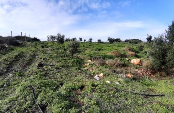 Land for For Sale in Milatos, Lasithi – 4050 sq.m.