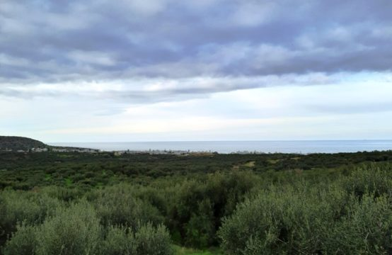 Land for For Sale in Milatos, Lasithi – 1116 sq.m.