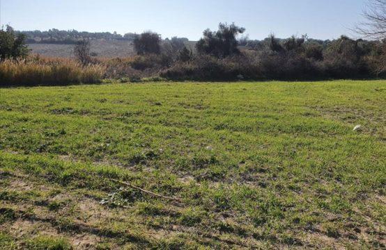 Land for For Sale in Kalandra, Kassandra – 770 sq.m.