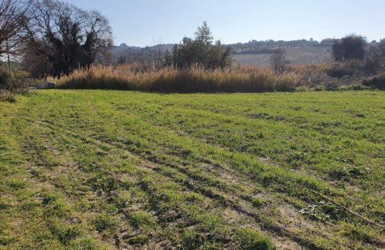 Land for For Sale in Akti Azapiko, Sithonia – 4000 sq.m.