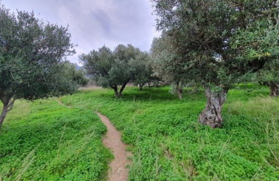 Land for For Sale in Neapoli, Lasithi – 573 sq.m.