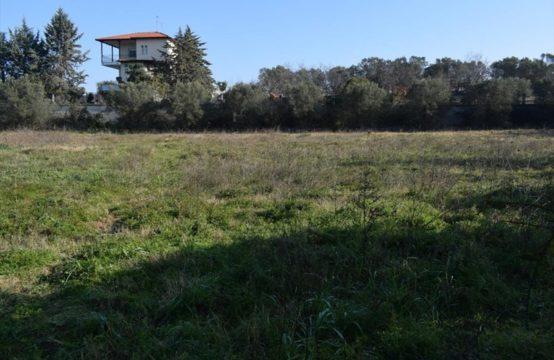 Land for For Sale in Trilofo, Thessaloniki – 3000 sq.m.